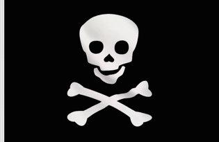 Drapeau Pirate Jolly Roger