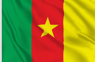 Drapeau de table Cameroun