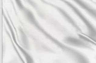 Drapeau de course blanc
