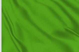 Drapeau de course vert