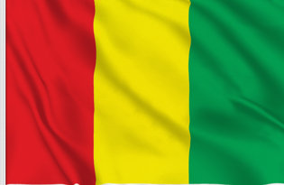 Drapeau de table Guinee