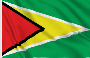Drapeau de table Guyana
