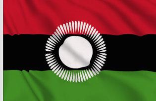 Drapeau Malawi (2010-2012)