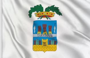 Drapeau Province de Trévise