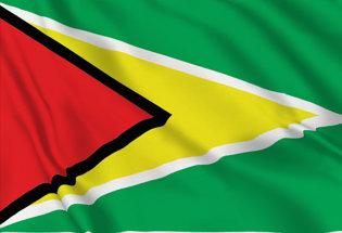 Drapeau Guyana