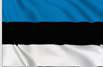 Drapeau Estonien