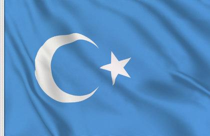 Drapeau Turkestan Oriental