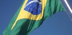 Drapeau brésilien réalisé par Flagsonline.fr