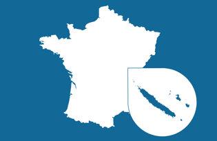 Drapeaux des DOM-TOM français