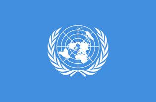 Drapeaux organisations internationales